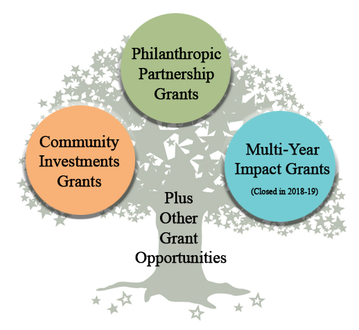 Overview   Lehigh Valley Community Foundation