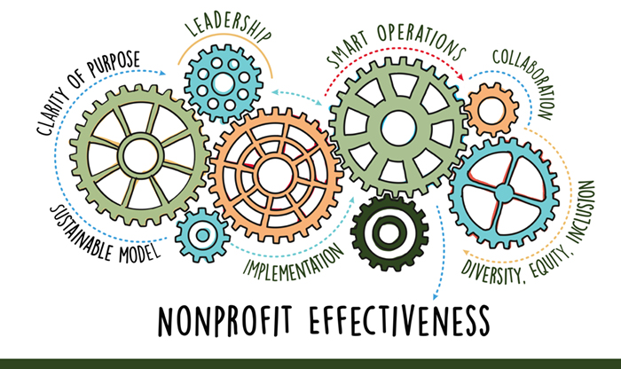 LVCF Nonprofit Effectiveness Pilot