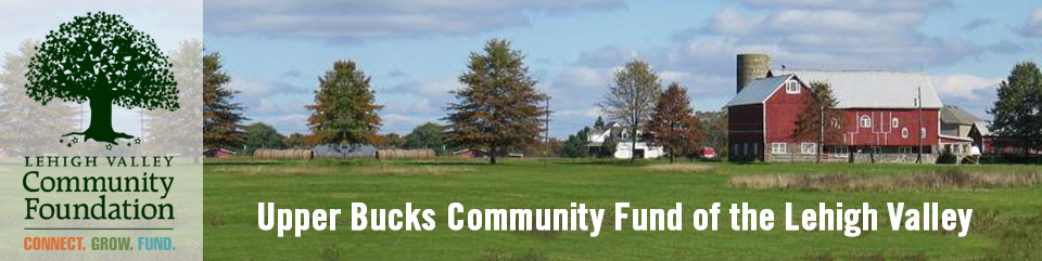 Upper Bucks Community Fund Of The Lehigh Valley Grants Lehigh