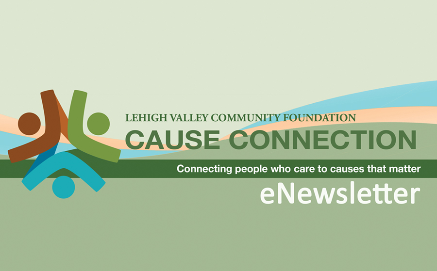 Cause Connection | Lehigh Valley Community Foundation