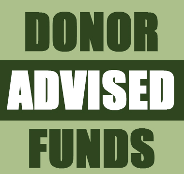 Three Reasons Community Foundations are Ideal for Your Donor-Advised